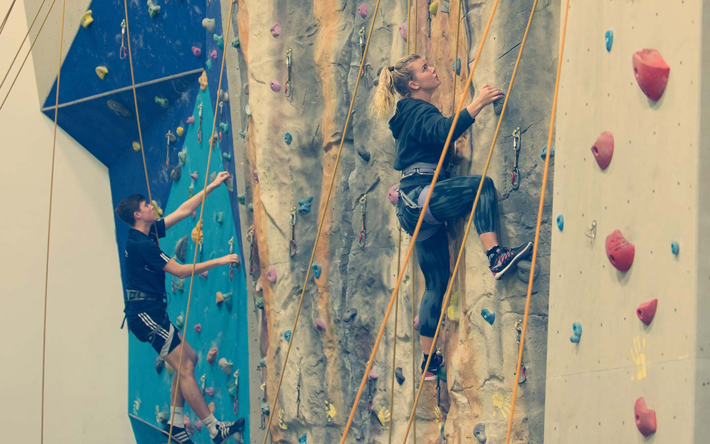 Sport Centre - Facilities & Services - Climbing Wall